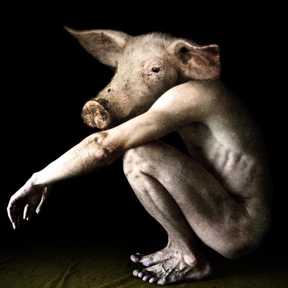 Zmieszanie rasy ludzkiej ze zwierzęcą nauka Ellen White